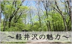 軽井沢の住環境